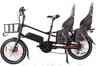 GreenBike Electric Motion Cargo Bike