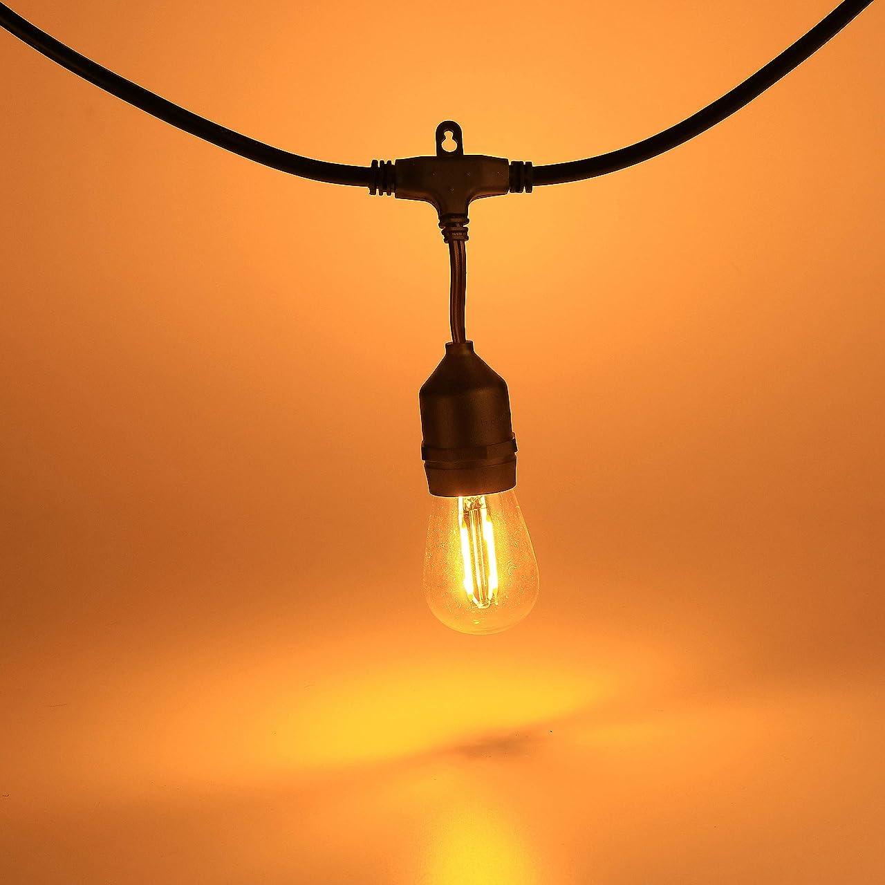 なめらかなもう一度ニンニク戸外灯串LED電球串暖白色調IP 65防水灯串高品質ガラス串電源はDIY/パーティ/バー/ブライダルランプ15個に適しています (黒)