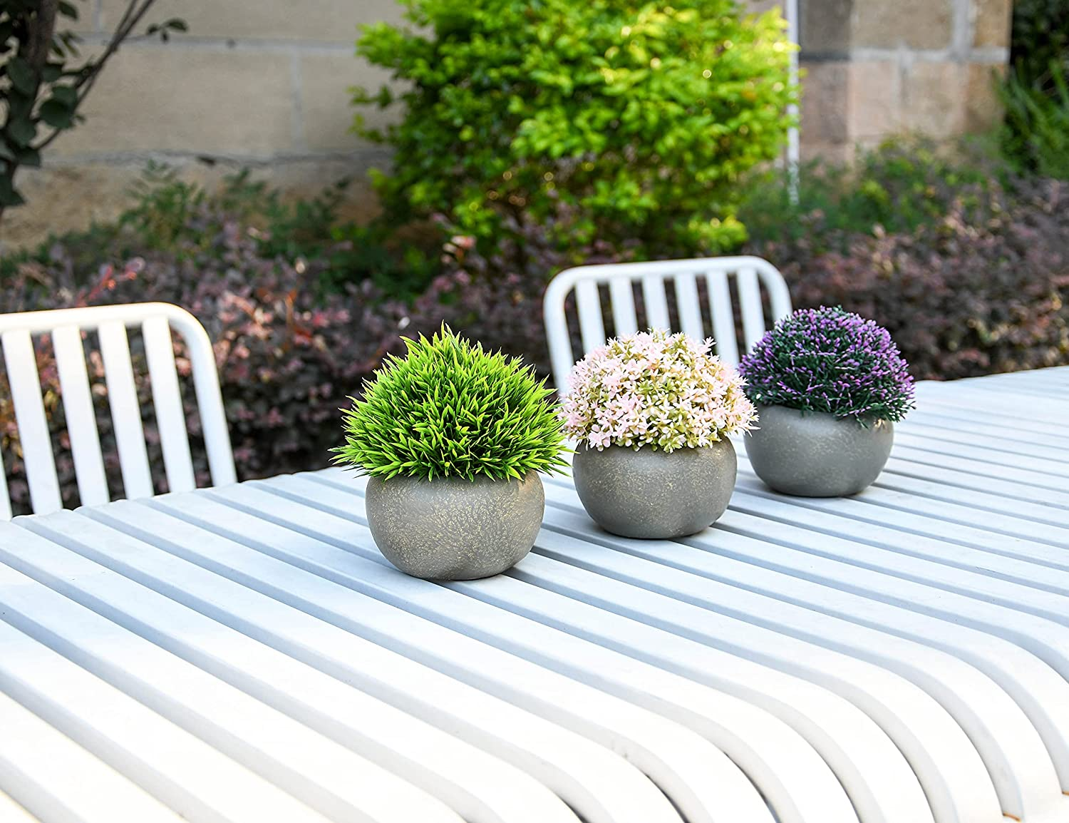 online shop Pack of Three San Diego Mall Cement-Potted Mini Artificial Plants Fa Plastic