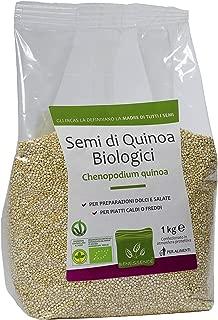 Semillas de Quinoa Biologica 1000 gr: Amazon.es: Salud y ...