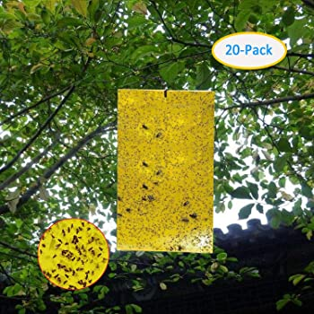 Garsum 20-Pack Dual-Sided Yellow Sticky Traps for Flying Plant Insect Like Fungus Gnats, Aphids, Whiteflies, Leafminers(6X8 Inch,Wire Ties Included)
