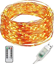 Ylife 33Ft 100 LED Fairy Lights, 8 Modes String Lights, IP 67 Waterproof, USB Interface Remote Control, Mini Decorative Copper Wire Lights for Festival Party