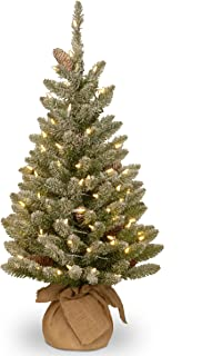 National Tree 3 Foot Snowy Concolor Fir Tree with Snowy Cones and 50 Battery Operated Warm White LED Lights in Burlap Base (SR1-328-30-B1)