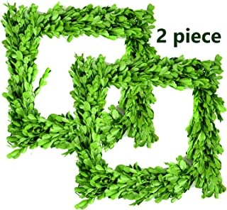 Touch of Nature Square Natural Preserved Green Boxwood 8in Wreath, 2pc