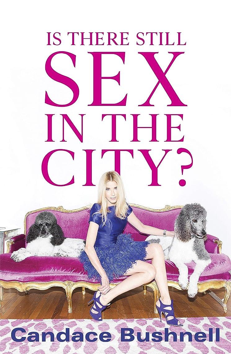 黒商品業界Is There Still Sex in the City? (English Edition)