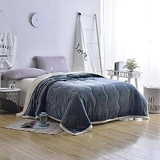 بطانية سميكة لشتاء Longhui bedding للشتاء، أريكة مزدوجة 60 × 80 من الصوف الثقيل الناعم الوهمي الدافئ من الألياف الدقيقة، أ...