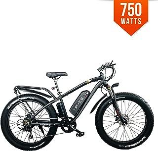 Bpmimports BPM F55 750W 13AH 48V 26' Fat TIRE Electric Bike Bicycle Rack Hunting 26'