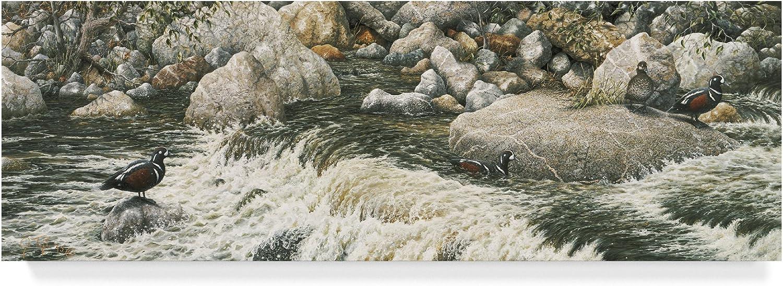 Swift Water by Jeff Tift, 8x24Inch