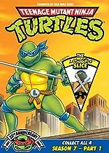Teenage Mutant Ninja Turtles: Season 7, Pt. 1 - The Leonardo Slice