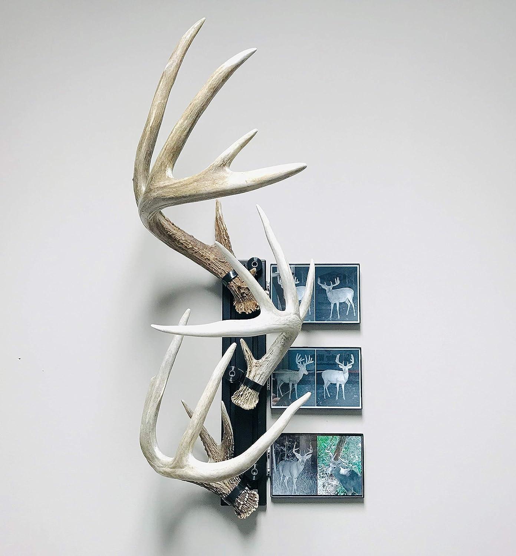 """RACK TRACK 18/"""" Kit #6 Shed Antler Mounting Kit"""
