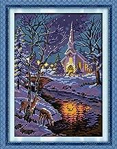 Joy Sunday Cross Stitch Kits, Winter Night Scenes Pattern Cross-Stitch Stamped Kit,Embroidery Set DMC Threads 11''x15''