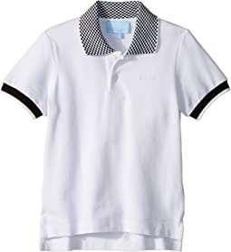 Lanvin Kids - Checkered Collar Polo (Toddler/Little Kids)