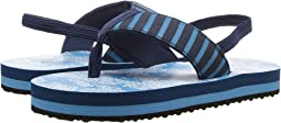 Hatley Kids - Sea Sharks Flip-Flop (Toddler/Little Kid)