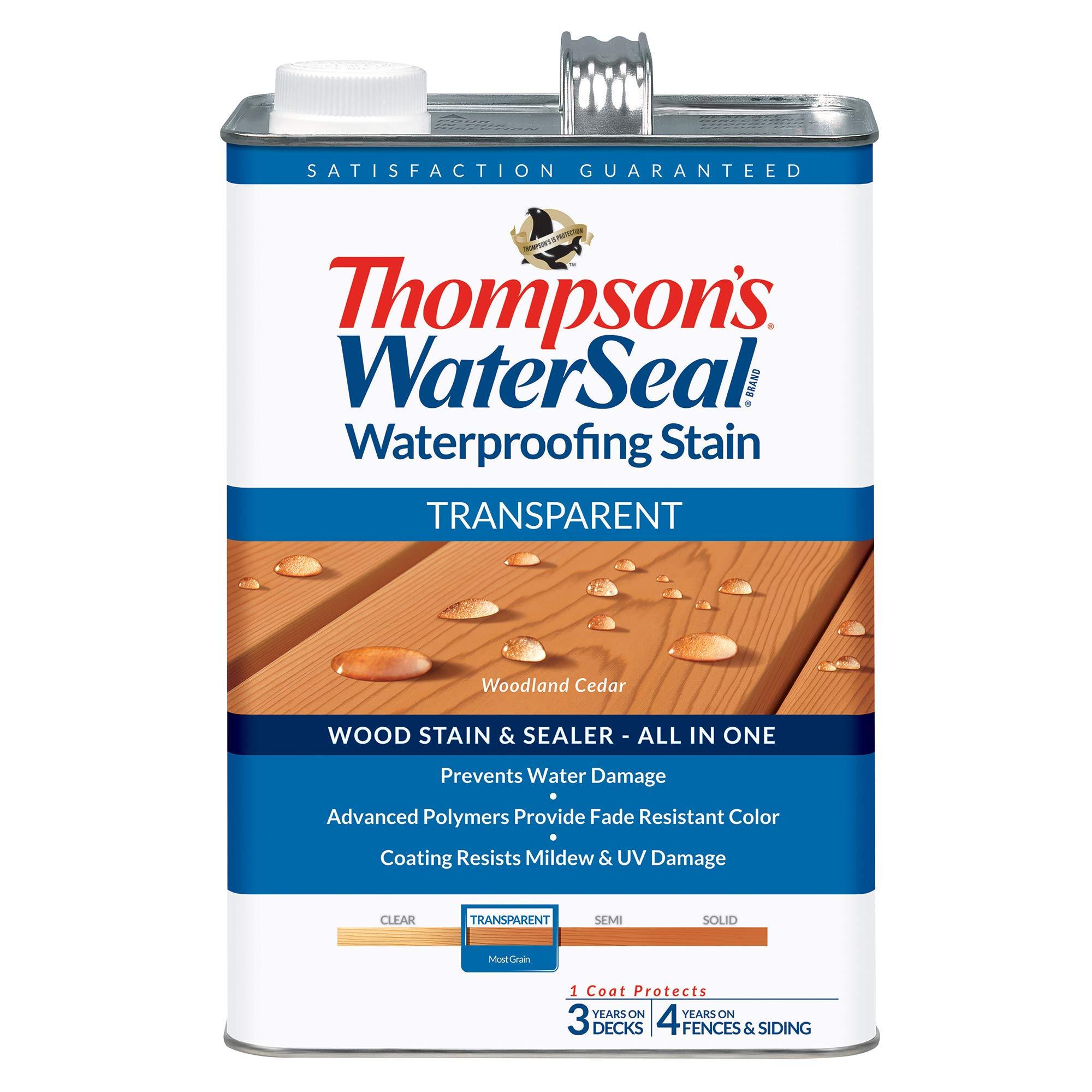THOMPSONS WATERSEAL TH 041851 16 Transparent Waterproofing