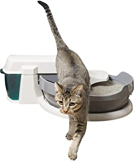 PetSafe Simply Clean Self-Cleaning Cat Litter Box, Automatic Litter Box, Works with Clumping Cat Litter