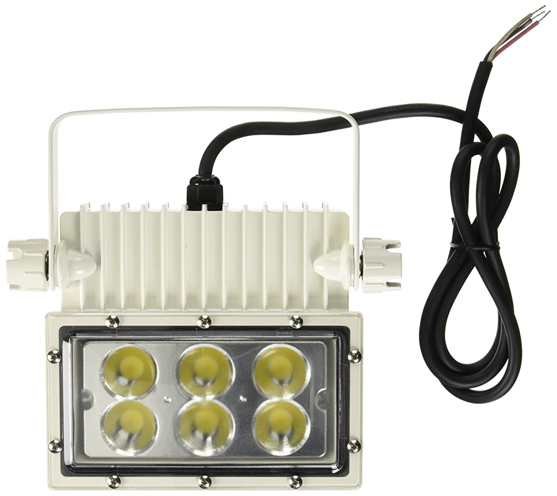 コーデリア脇にブランチアイリスオーヤマ LED 投光器 角型 屋外 63W 防雨形 エコハイルクスパワー IRLDSP63N2-N-W 事