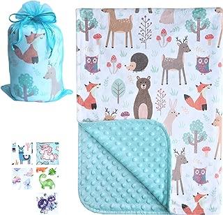 Bundled Joy Baby Gifts - Premium Soft Plush Lightweight Minky Dot Toddler Baby Newborn Blanket 30