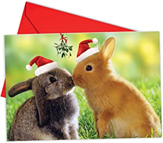 12 'Christmas Animal Smackers Bunny' Adorable Boxed Christmas Greeting Cards 4.63 x 6.75 inch, Merry Xmas Note Cards for Holidays, Gifts, Bunny Humor, Notecard Stationery (w/Envelopes) B6594EXSG