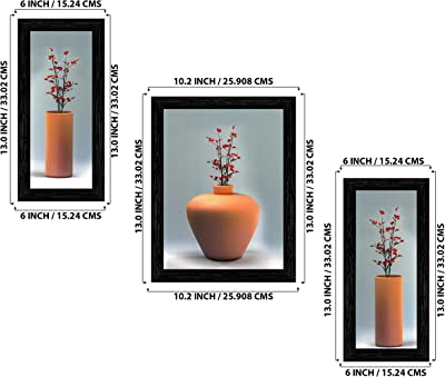 Indianara Set of 3 Flowers in Vases Framed Art Painting (1055BK) without glass 6 X 13, 10.2 X 13, 6 X 13 INCH