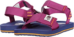 Wild Aster Purple/Bright Navy