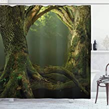 Ambesonne Nature Shower Curtain, Twiggy Old Tree Branches Growth Life Themed Forest Woodland Foggy Dark Misty Scene, Cloth...
