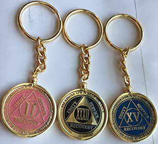 RecoveryChip Reflex or Elegant AA Medallion Keychain Sobriety Chip Holder 18k Gold Plated