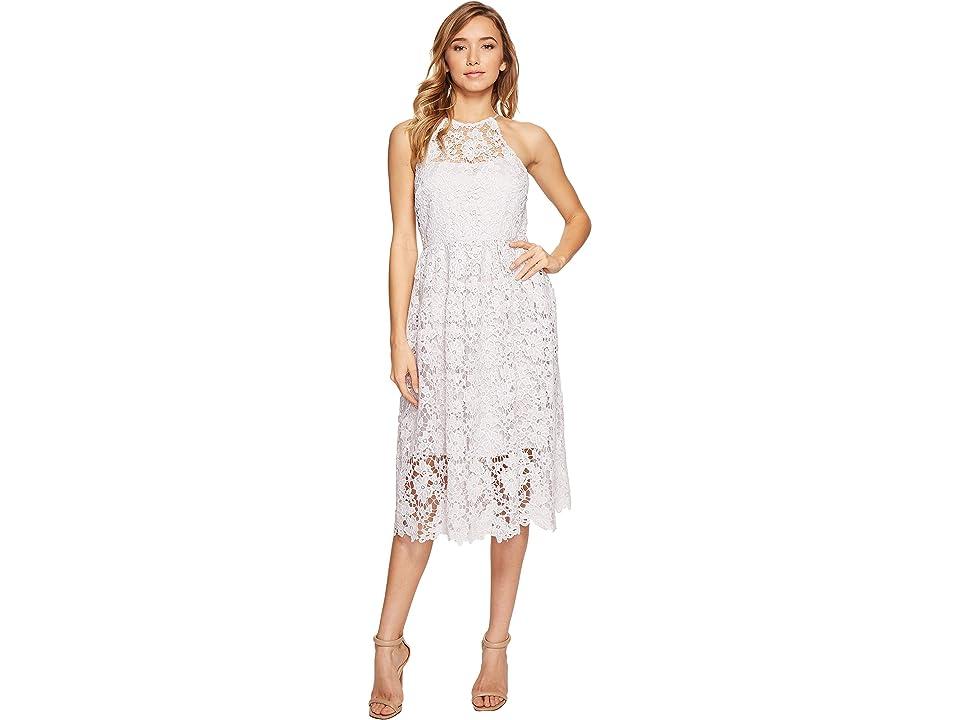 Donna Morgan Chemical Lace Dress (Powder) Women