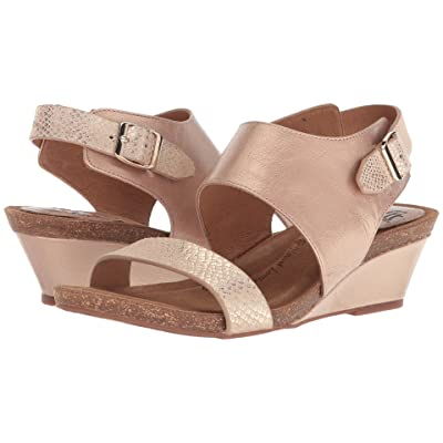 Sofft Vanita (Champagne/Gold Bruce Metal/Shell Suede) Women