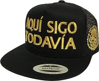 AQUÍ SIGO Todavía SAN LUIS Potosí Logo Federal Hat MESH Black
