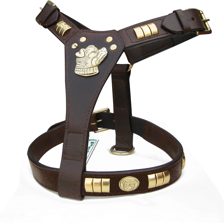 ZAIN TACK Harnais en cuir pour chien Staffordshire Staffordshire avec motif pour chien Enti/èrement rembourr/é en laiton 6 couleurs noir