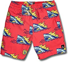 Volcom Big Boys Duhh Dunt Shark 17