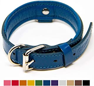 perri's padded leather collar
