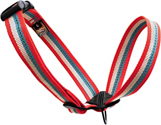 Kurgo Walk About Head Halter, Medium, red/blue
