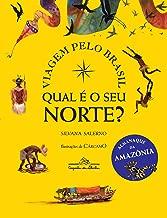 Qual é o seu norte?: Viagem pelo Brasil