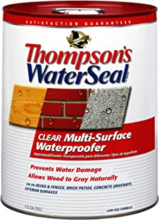 Thompson's TH.024105-20 Waterseal Clear Multi-Surface Waterproofer, five gallon bucket