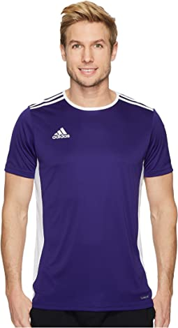 Collegiate Purple/White