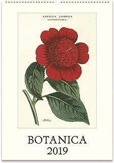Cavallini Papers & Co. Botanica 2019 Wall Calendar, Multicolor