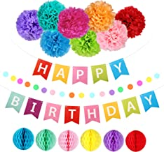 Happy Birthday Decorations Banner with Tissue Pom Poms Honeycomb Balls for Rainbow Birthday Party Supplies, Will Well Happy Birthday Decorations for Women Men Girls Boys Adults and Kids