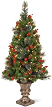 National Tree 4 Foot Crestwood Spruce Entrance Tree with Cones, Glitter, Red Berries, Silver Bristle and 100 Clear Lights ...