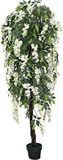 AMERIQUE Silk Tech, w Gorgeous & Unique 6 Feet Wistera Tree Artificial Plant with Nursery Plastic Pot, Real Touch Technology, with UV Protection, Super Quality, Cream and Green