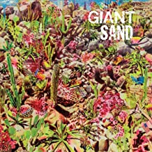 Best giant sand valley of rain Reviews