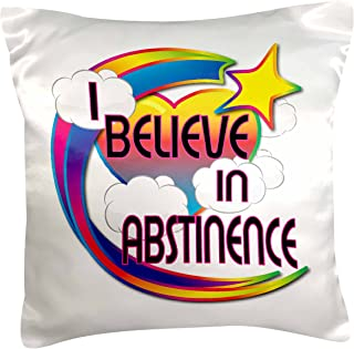 3dRose I Believe In Abstinence Cute Believer Design, Pillow Case, 41cm by 41cm