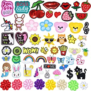 GOTONE Iron On Patches Embroidered Patch Sew, 60PCS Flowers Rabbit Rainbow Stars Strawberry Cute Patches Set Assorted Size...