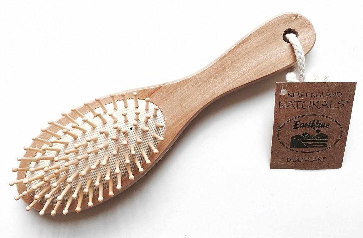 色エージェント泣くEarthline Wooden Massage Hair Brush Large 611 by Earthline