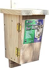 MUNDO Original batear Beamfeature caja