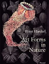 Ernst haeckel art forms in nature /anglais: Prints of Ernst Haekel (Monographs)