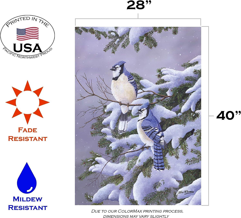 Toland Home Garden Two Blues 28 X 40 Inch Decorative Winter Snow Jay Bird House Flag Garden Outdoor