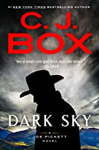 Dark Sky (A Joe Pickett Novel Book 21)