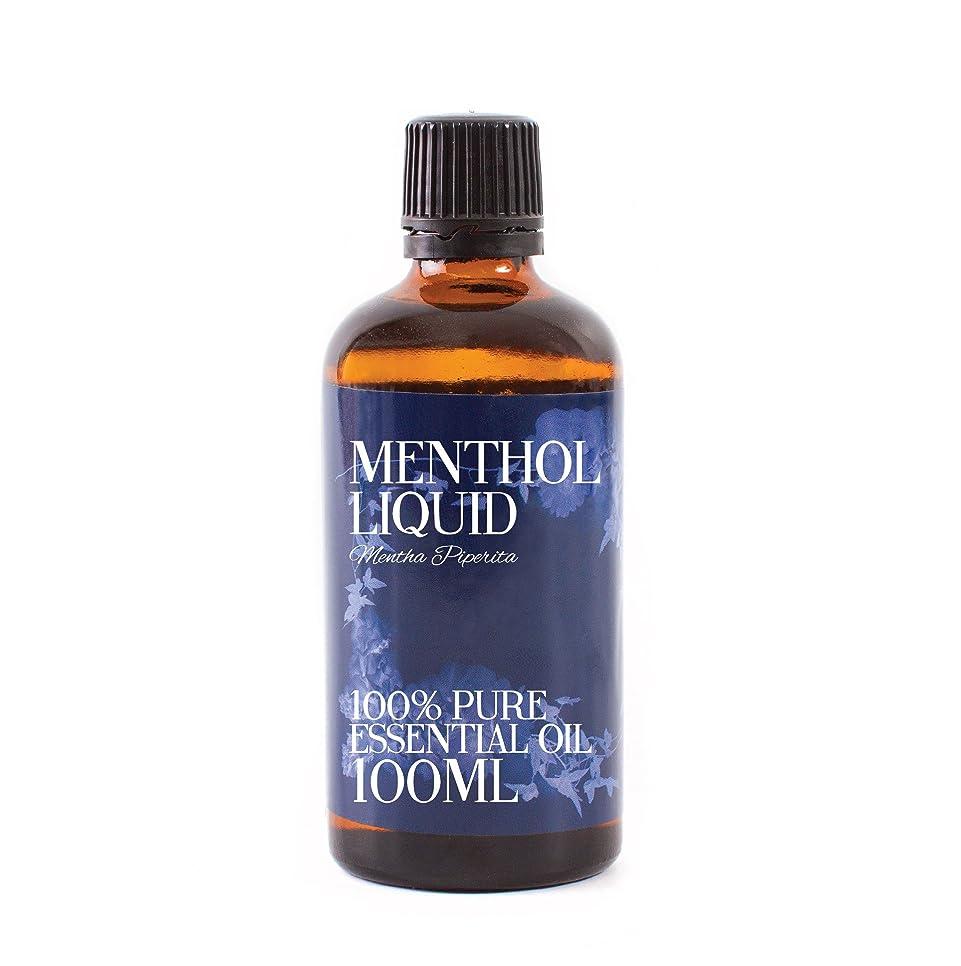 ジャムタウポ湖移民Mystic Moments | Menthol Liquid Essential Oil - 100ml - 100% Pure