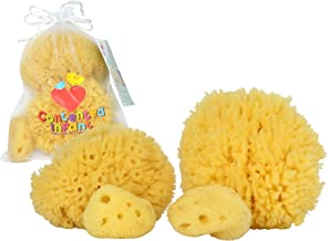 Real Sea Sponges for Babies - 4 Pk Bath Care Set, Gentle, Kind on Skin, for Bathing Washing Body Eyes & Ears, Also for Newborn Toddler & Kids; Baby Shower Spa Gift by Contented Infant
